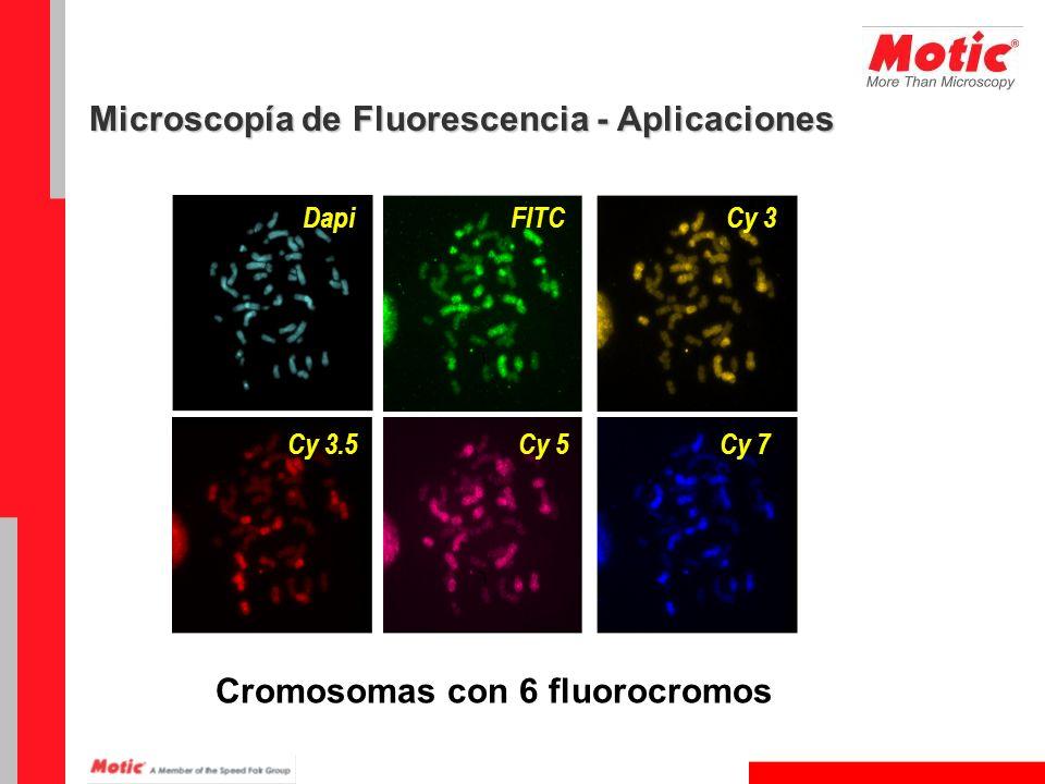 DapiFITCCy 3 Cy 7Cy 5Cy 3.5 Cromosomas con 6 fluorocromos Microscopía de Fluorescencia - Aplicaciones