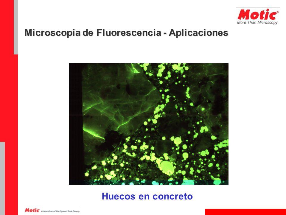 Huecos en concreto Microscopía de Fluorescencia - Aplicaciones