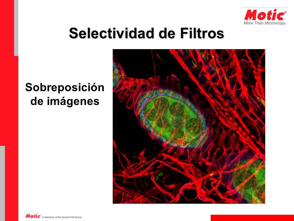 Sobreposición de imágenes Selectividad de Filtros