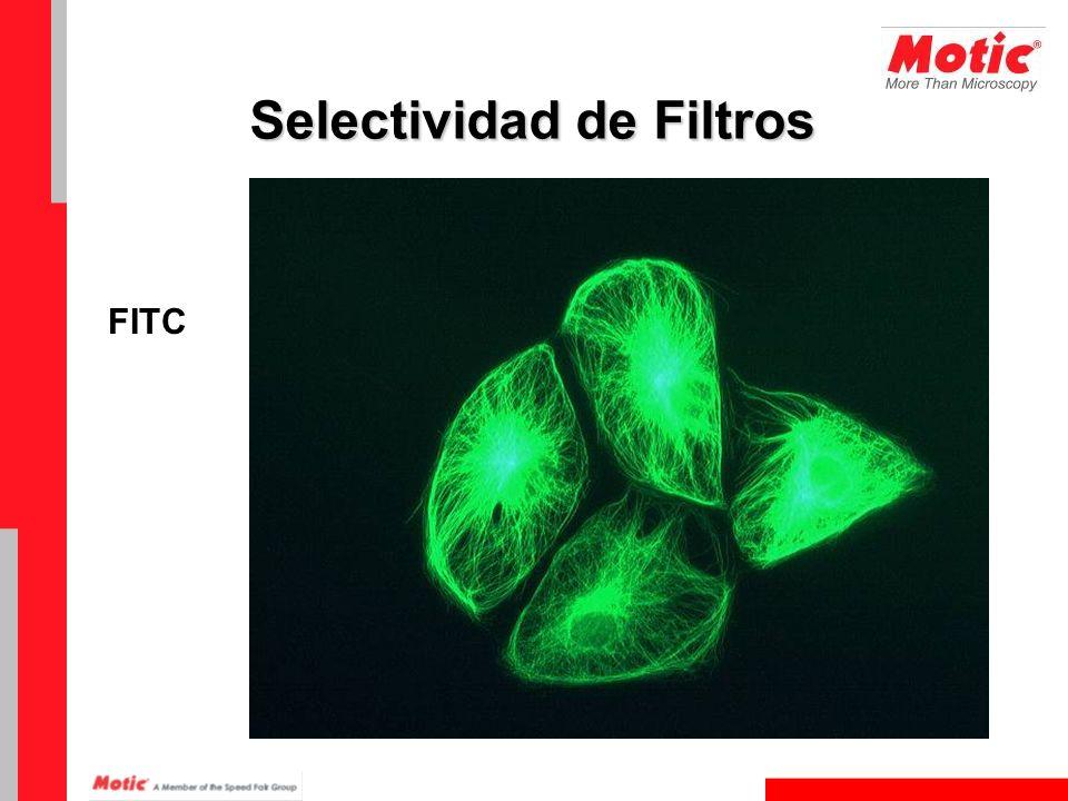 FITC Selectividad de Filtros