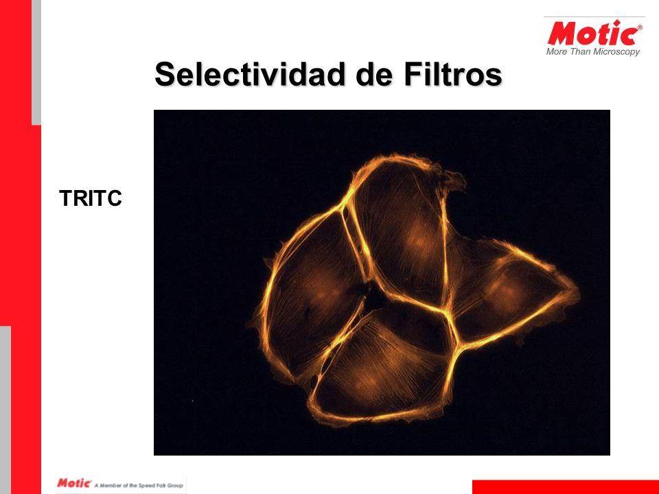 TRITC Selectividad de Filtros