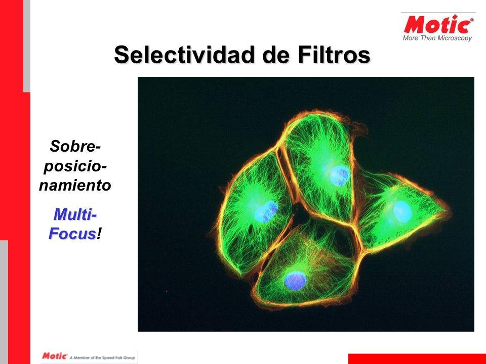 Sobre- posicio- namiento Multi- Focus Multi- Focus! Selectividad de Filtros