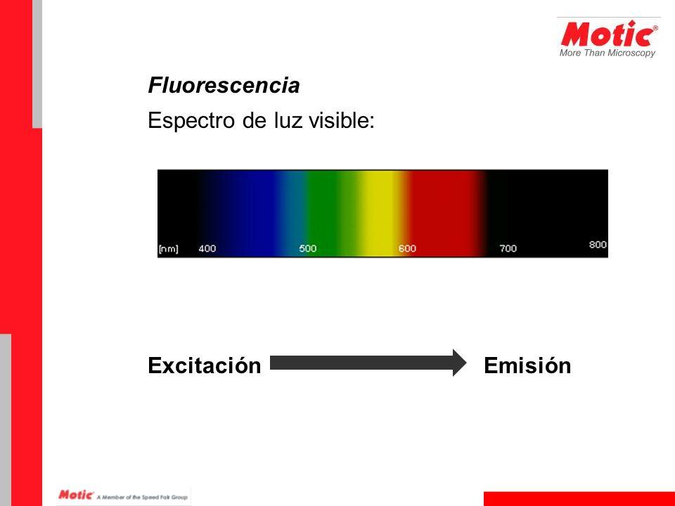 Fluorescencia Espectro de luz visible: Excitación Emisión
