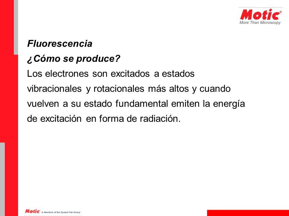 Fluorescencia ¿Cómo se produce? Los electrones son excitados a estados vibracionales y rotacionales más altos y cuando vuelven a su estado fundamental