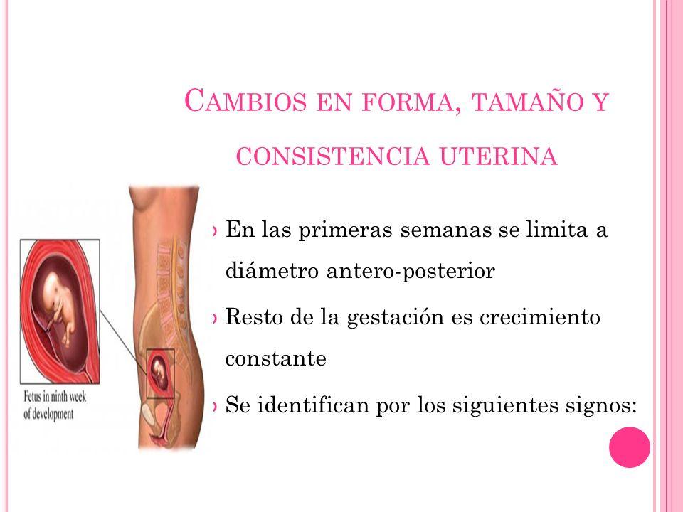 C AMBIOS EN FORMA, TAMAÑO Y CONSISTENCIA UTERINA En las primeras semanas se limita a diámetro antero-posterior Resto de la gestación es crecimiento constante Se identifican por los siguientes signos: