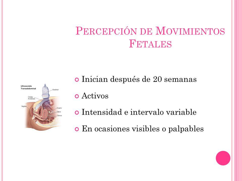 P ERCEPCIÓN DE M OVIMIENTOS F ETALES Inician después de 20 semanas Activos Intensidad e intervalo variable En ocasiones visibles o palpables
