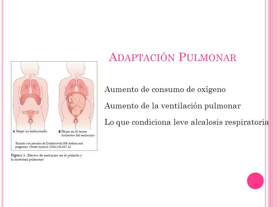 A DAPTACIÓN P ULMONAR Aumento de consumo de oxígeno Aumento de la ventilación pulmonar Lo que condiciona leve alcalosis respiratoria