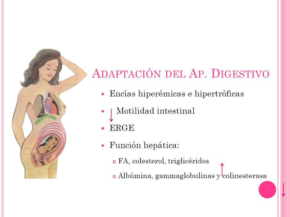 A DAPTACIÓN DEL A P. D IGESTIVO Encías hiperémicas e hipertróficas Motilidad intestinal ERGE Función hepática: FA, colesterol, triglicéridos Albúmina,