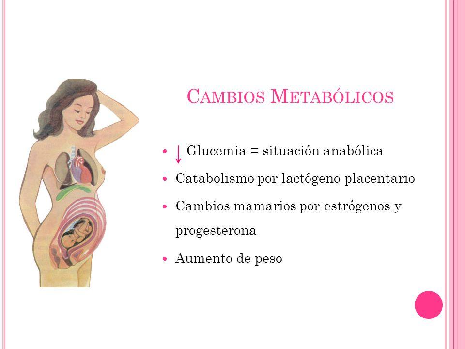 C AMBIOS M ETABÓLICOS Glucemia = situación anabólica Catabolismo por lactógeno placentario Cambios mamarios por estrógenos y progesterona Aumento de p
