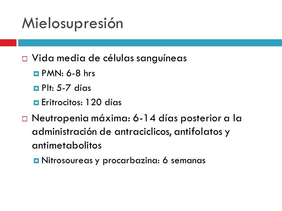 Mielosupresión Vida media de células sanguíneas PMN: 6-8 hrs Plt: 5-7 días Eritrocitos: 120 días Neutropenia máxima: 6-14 días posterior a la administ