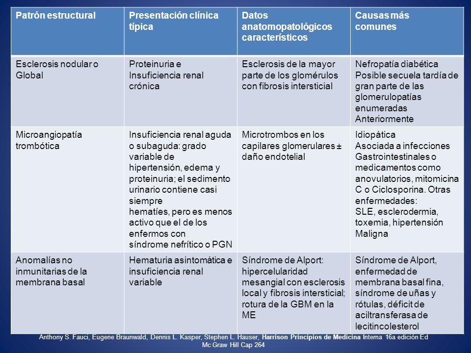 Patrón estructuralPresentación clínica típica Datos anatomopatológicos característicos Causas más comunes Esclerosis nodular o Global Proteinuria e In