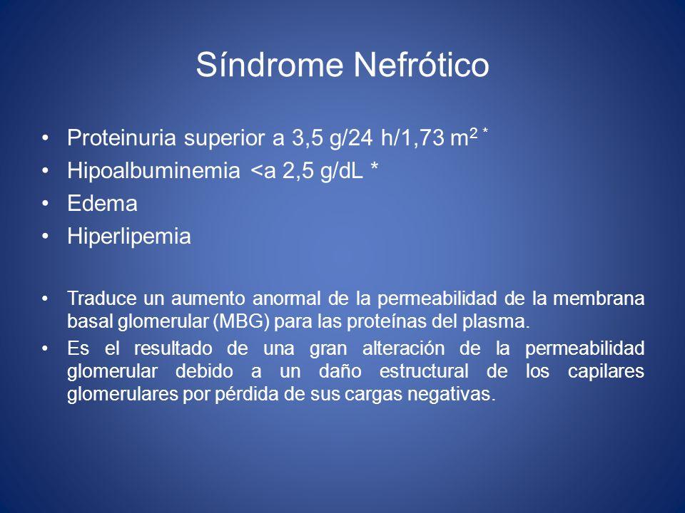 Síndrome Nefrótico Proteinuria superior a 3,5 g/24 h/1,73 m 2 * Hipoalbuminemia <a 2,5 g/dL * Edema Hiperlipemia Traduce un aumento anormal de la perm