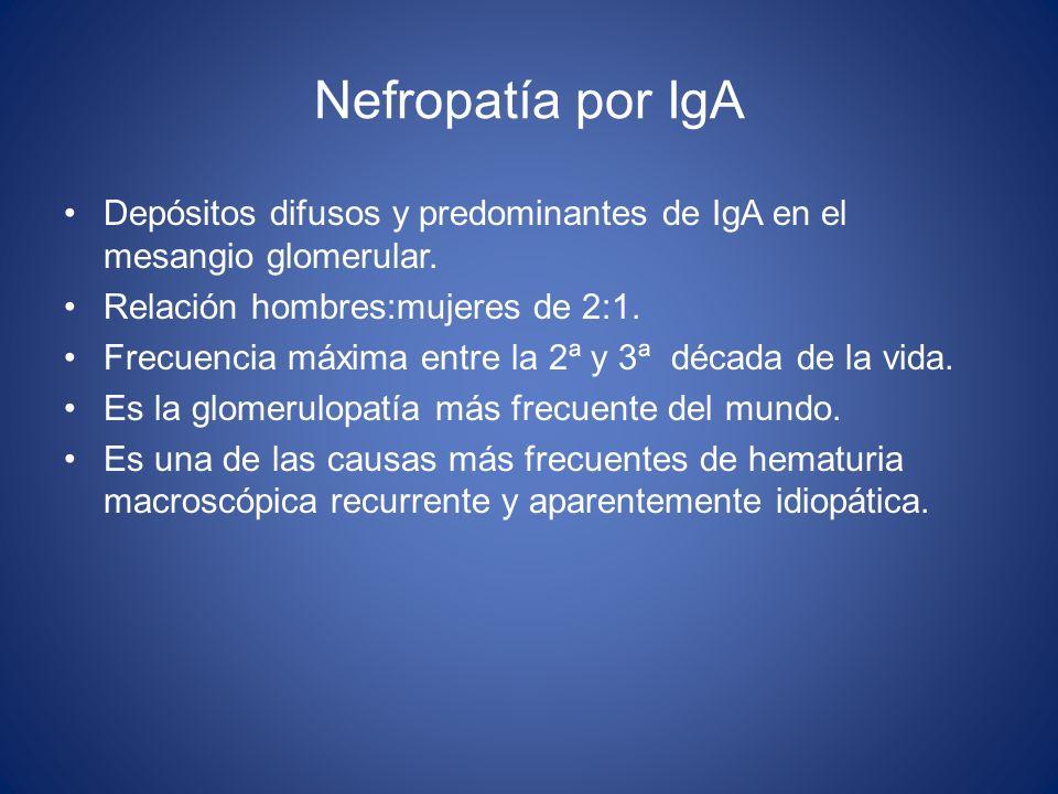 Nefropatía por IgA Depósitos difusos y predominantes de IgA en el mesangio glomerular. Relación hombres:mujeres de 2:1. Frecuencia máxima entre la 2ª