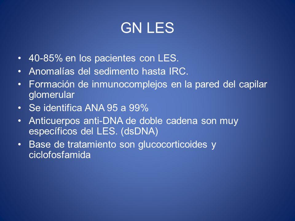 GN LES 40-85% en los pacientes con LES. Anomalías del sedimento hasta IRC. Formación de inmunocomplejos en la pared del capilar glomerular Se identifi