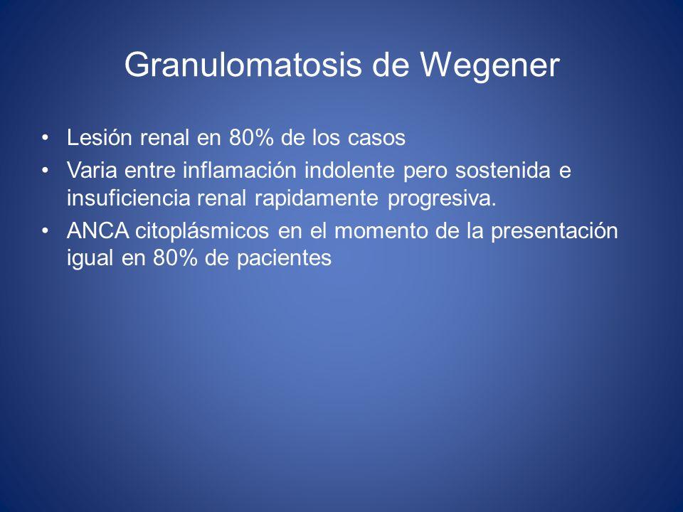Granulomatosis de Wegener Lesión renal en 80% de los casos Varia entre inflamación indolente pero sostenida e insuficiencia renal rapidamente progresi