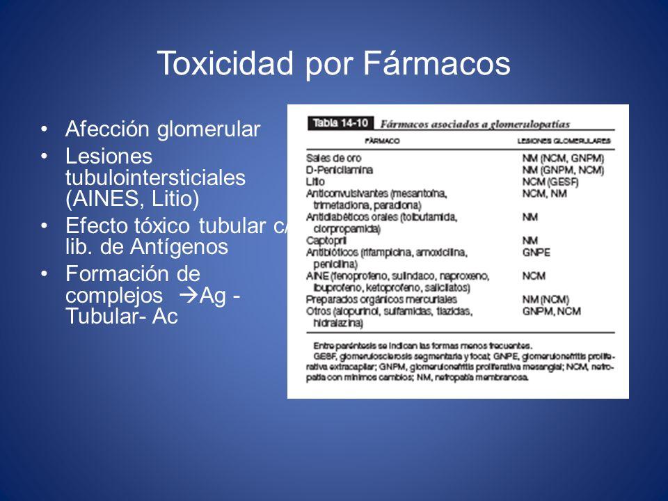 Toxicidad por Fármacos Afección glomerular Lesiones tubulointersticiales (AINES, Litio) Efecto tóxico tubular c/ lib. de Antígenos Formación de comple