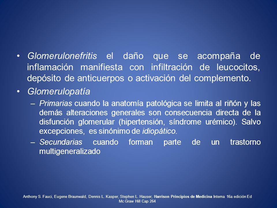 Glomerulonefritis el daño que se acompaña de inflamación manifiesta con infiltración de leucocitos, depósito de anticuerpos o activación del complemen