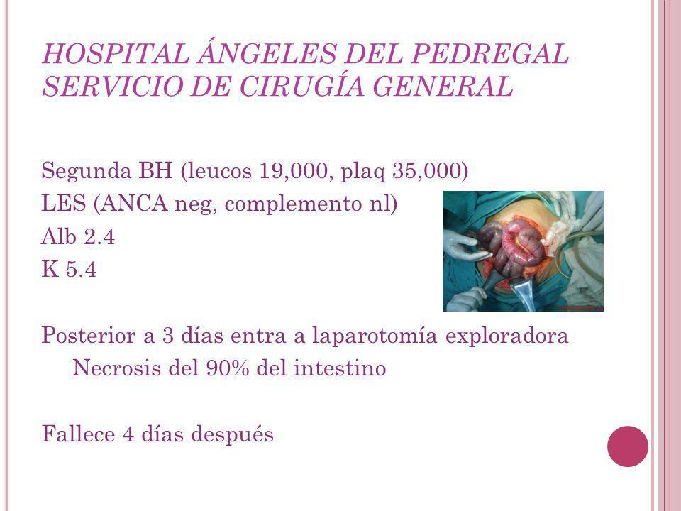 HOSPITAL ÁNGELES DEL PEDREGAL SERVICIO DE CIRUGÍA GENERAL Segunda BH (leucos 19,000, plaq 35,000) LES (ANCA neg, complemento nl) Alb 2.4 K 5.4 Posterior a 3 días entra a laparotomía exploradora Necrosis del 90% del intestino Fallece 4 días después