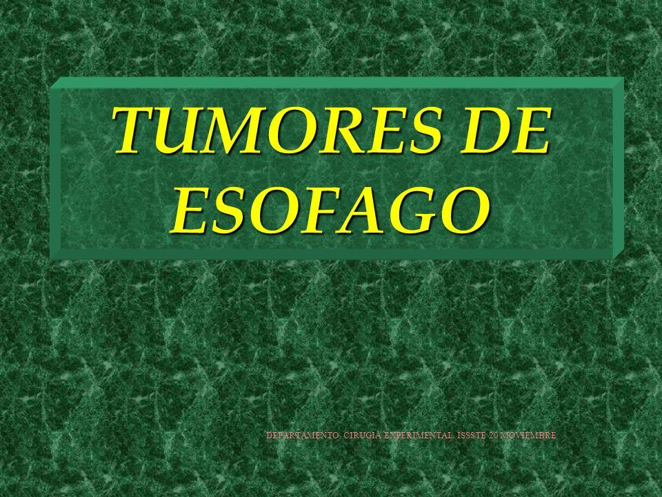 TUMORES DE ESOFAGO TUMORES EPITELIALES MALIGNOS CARCINOSARCOMA CARCINOMA CELULAS ESCAMOSAS VERRUGOSO CARCINOMA ADENOESCAMOSO CARCINOMA QUISTICO ADENOIDE MELANOMA +F METASTASICO (MELANOCITOS Y ACTIVIDAD DE EMPALME) CARCINOMA CELULAS PEQUEÑAS CARCINOIDE CORIOCARCINOMA YAMADA BASIC MECHANISM OF NORMAL...