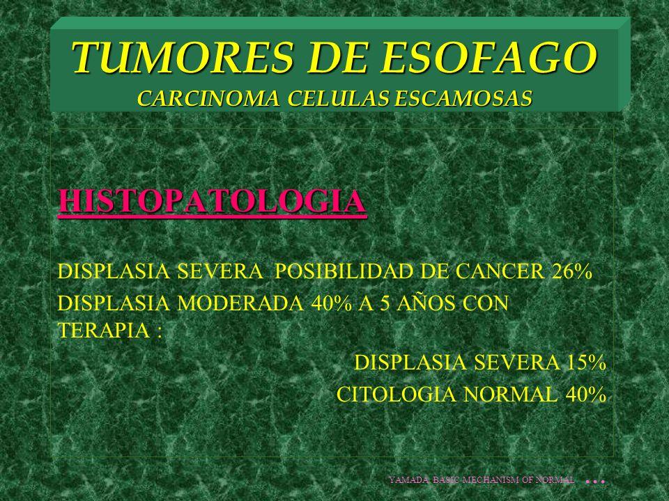 TUMORES DE ESOFAGO CARCINOMA CELULAS ESCAMOSAS HISTOPATOLOGIA DISPLASIA SEVERA POSIBILIDAD DE CANCER 26% DISPLASIA MODERADA 40% A 5 AÑOS CON TERAPIA :