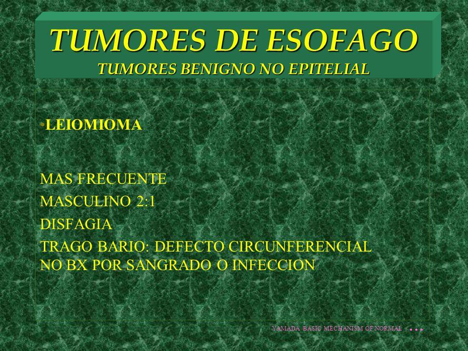 TUMORES DE ESOFAGO TUMORES BENIGNO NO EPITELIAL LEIOMIOMA MAS FRECUENTE MASCULINO 2:1 DISFAGIA TRAGO BARIO: DEFECTO CIRCUNFERENCIAL NO BX POR SANGRADO