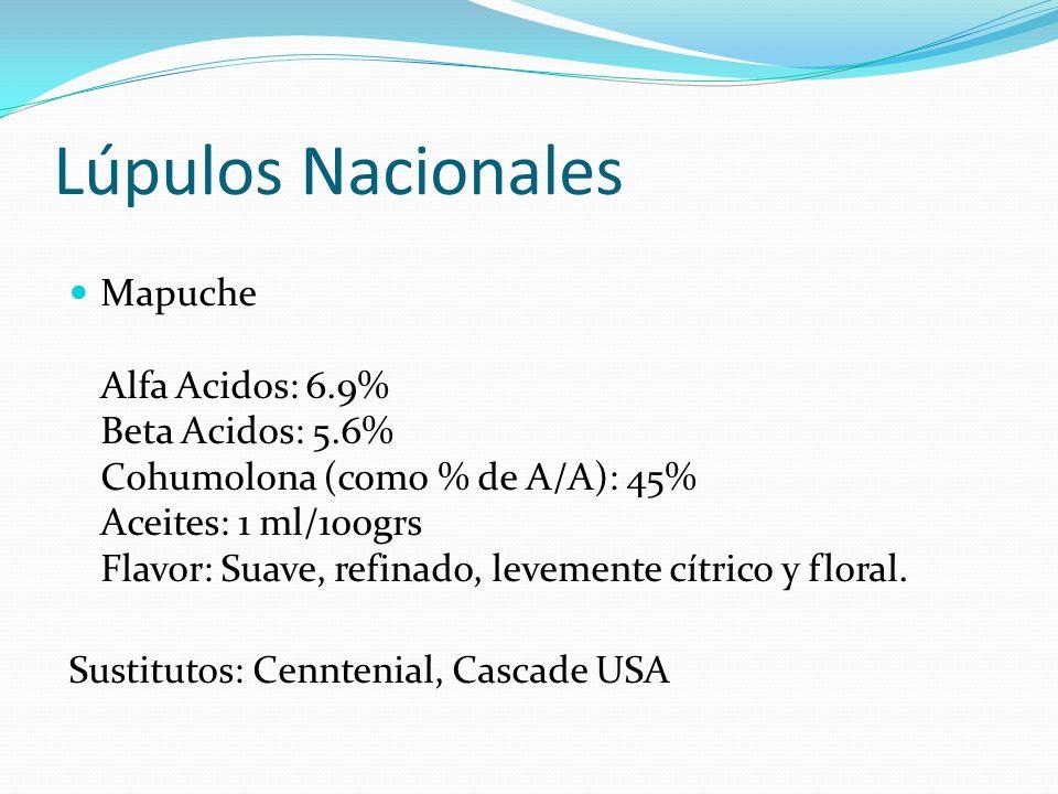 Lúpulos Nacionales Mapuche Alfa Acidos: 6.9% Beta Acidos: 5.6% Cohumolona (como % de A/A): 45% Aceites: 1 ml/100grs Flavor: Suave, refinado, levemente