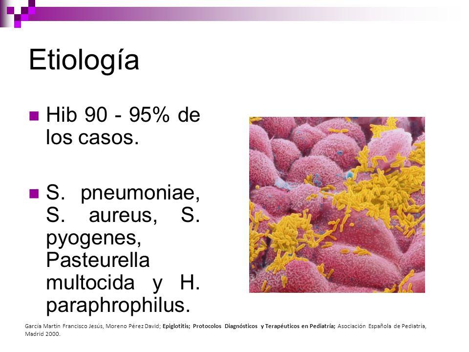 Etiología Hib 90 - 95% de los casos. S. pneumoniae, S. aureus, S. pyogenes, Pasteurella multocida y H. paraphrophilus. García Martín Francisco Jesús,