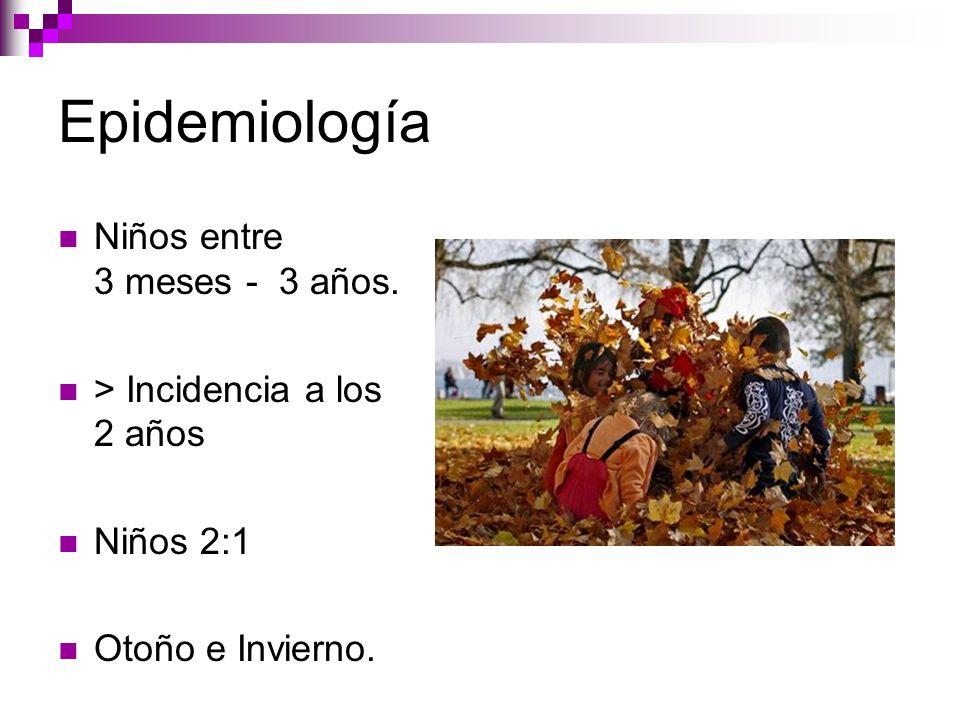 Epidemiología Niños entre 3 meses - 3 años. > Incidencia a los 2 años Niños 2:1 Otoño e Invierno.