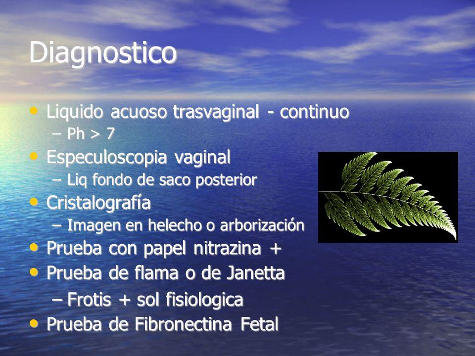 Diagnostico Liquido acuoso trasvaginal - continuo Liquido acuoso trasvaginal - continuo –Ph > 7 Especuloscopia vaginal Especuloscopia vaginal –Liq fon