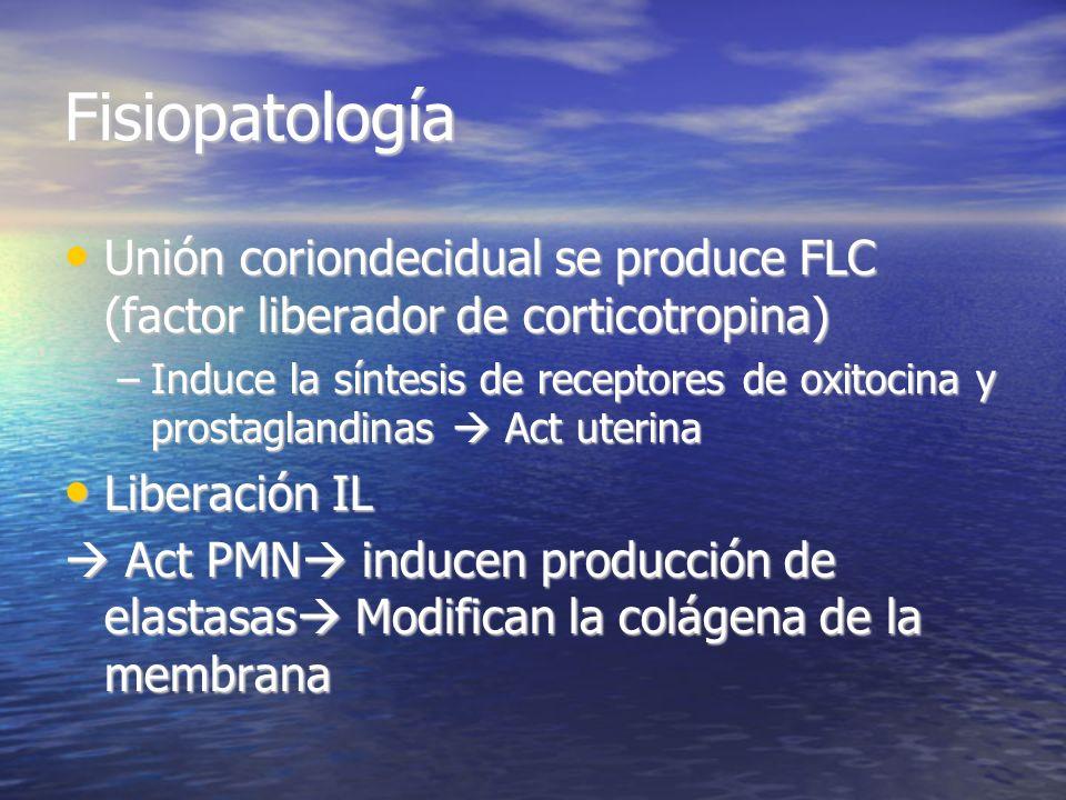 Fisiopatología Unión coriondecidual se produce FLC (factor liberador de corticotropina) Unión coriondecidual se produce FLC (factor liberador de corti