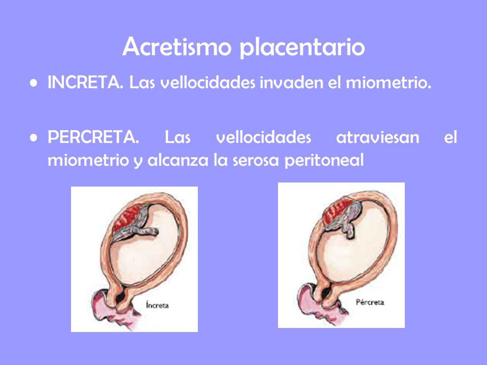 Acretismo placentario INCRETA. Las vellocidades invaden el miometrio. PERCRETA. Las vellocidades atraviesan el miometrio y alcanza la serosa peritonea