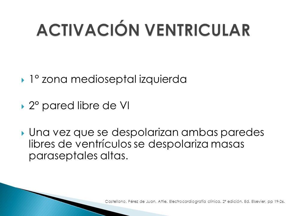 1° zona medioseptal izquierda 2° pared libre de VI Una vez que se despolarizan ambas paredes libres de ventrículos se despolariza masas paraseptales a