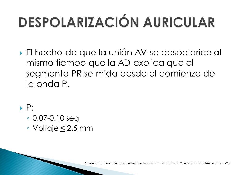 El hecho de que la unión AV se despolarice al mismo tiempo que la AD explica que el segmento PR se mida desde el comienzo de la onda P. P: 0.07-0.10 s