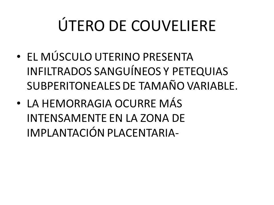 ÚTERO DE COUVELIERE EL MÚSCULO UTERINO PRESENTA INFILTRADOS SANGUÍNEOS Y PETEQUIAS SUBPERITONEALES DE TAMAÑO VARIABLE. LA HEMORRAGIA OCURRE MÁS INTENS