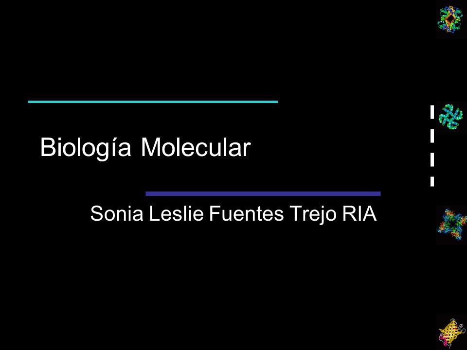 Biología Molecular Sonia Leslie Fuentes Trejo RIA