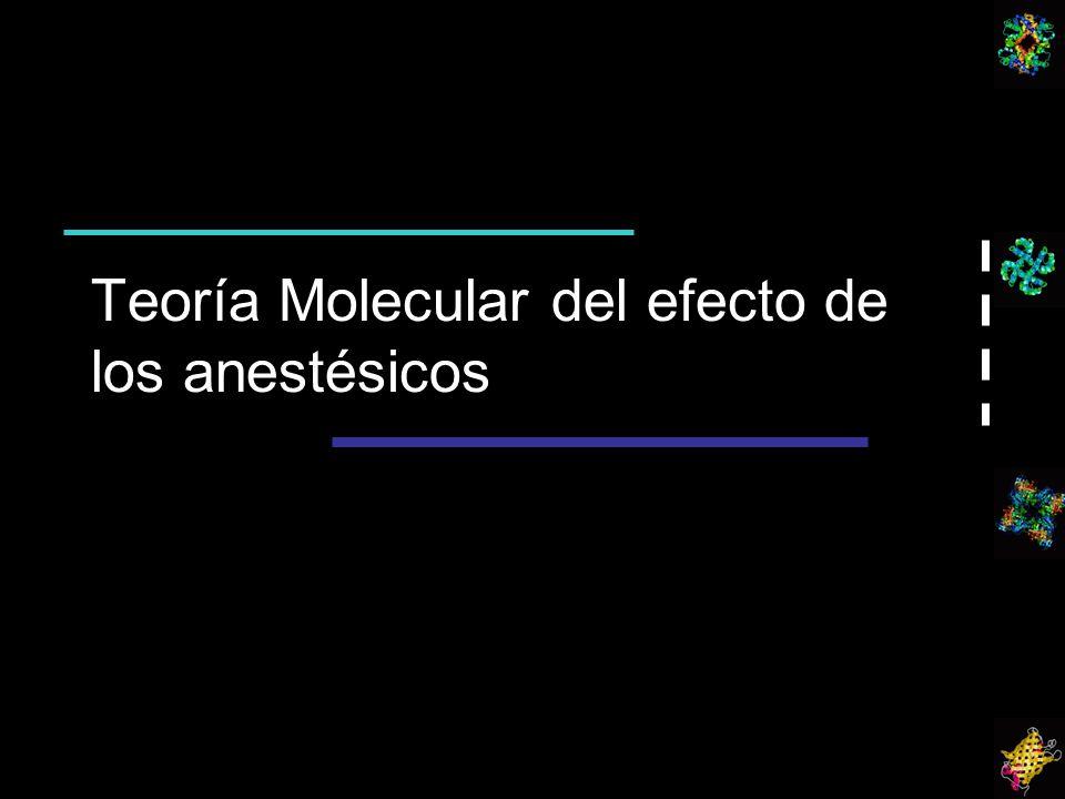 Teoría Molecular del efecto de los anestésicos