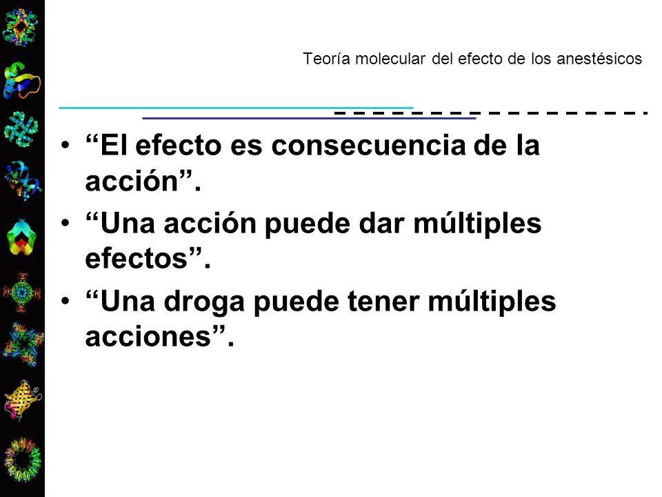 Teoría molecular del efecto de los anestésicos El efecto es consecuencia de la acción. Una acción puede dar múltiples efectos. Una droga puede tener m
