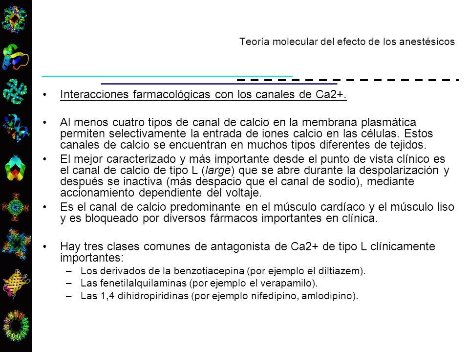 Interacciones farmacológicas con los canales de Ca2+. Al menos cuatro tipos de canal de calcio en la membrana plasmática permiten selectivamente la en