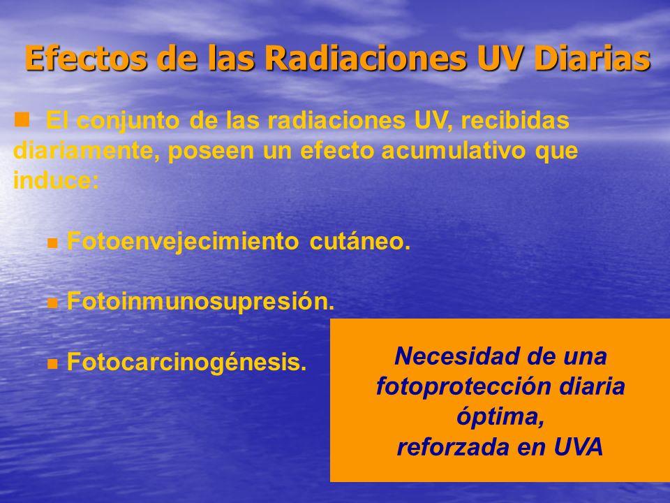 n El conjunto de las radiaciones UV, recibidas diariamente, poseen un efecto acumulativo que induce: n Fotoenvejecimiento cutáneo. n Fotoinmunosupresi