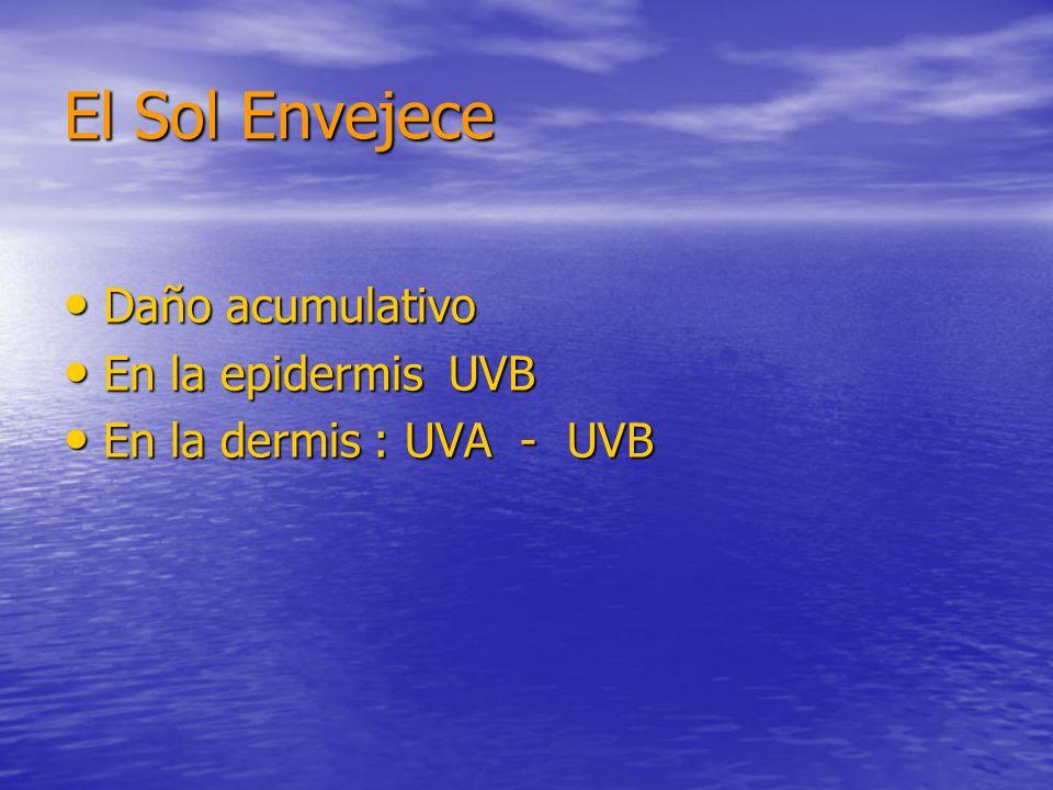 El Sol Envejece Daño acumulativo Daño acumulativo En la epidermis UVB En la epidermis UVB En la dermis : UVA - UVB En la dermis : UVA - UVB