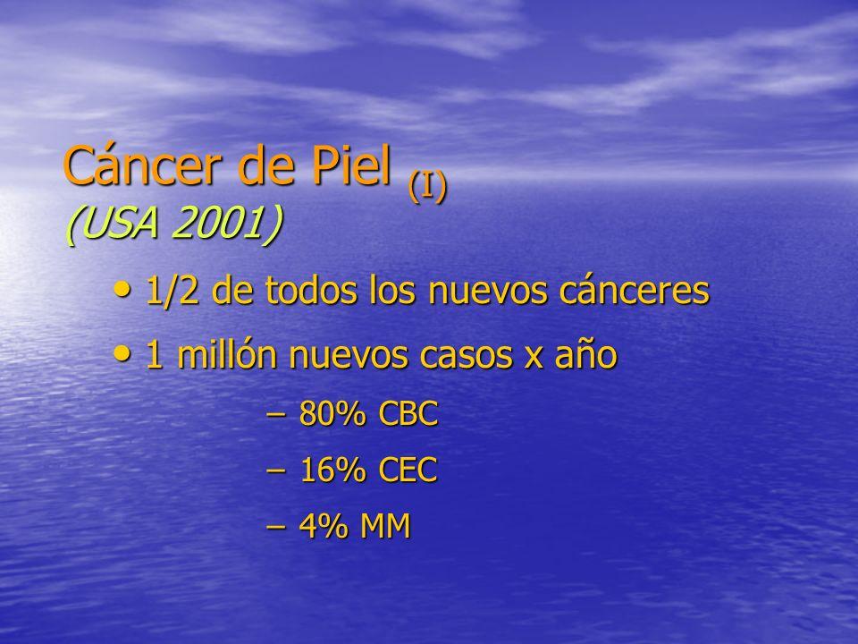 Cáncer de Piel (I) (USA 2001) 1/2 de todos los nuevos cánceres 1/2 de todos los nuevos cánceres 1 millón nuevos casos x año 1 millón nuevos casos x añ