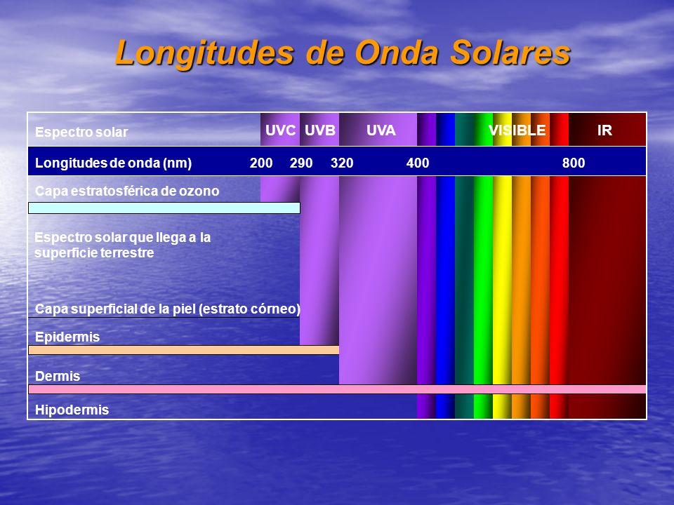 Espectro solar Capa estratosférica de ozono Espectro solar que llega a la superficie terrestre Capa superficial de la piel (estrato córneo) Epidermis
