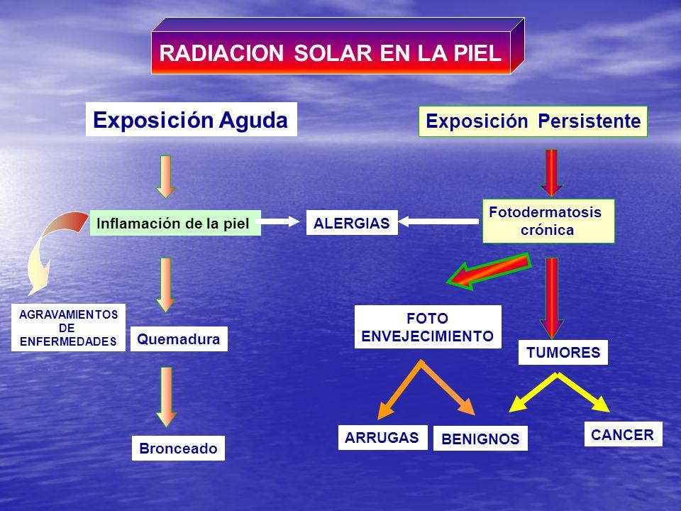RADIACION SOLAR EN LA PIEL Exposición Aguda Quemadura Bronceado Inflamación de la piel ALERGIAS AGRAVAMIENTOS DE ENFERMEDADES Exposición Persistente F