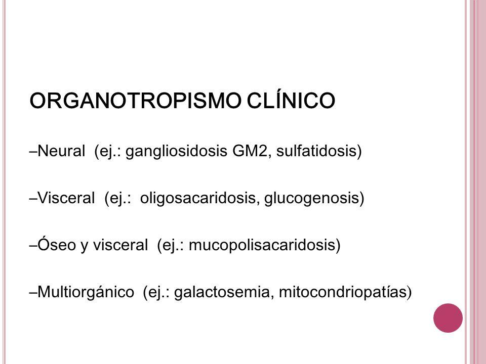 ORGANOTROPISMO CLÍNICO –Neural (ej.: gangliosidosis GM2, sulfatidosis) –Visceral (ej.: oligosacaridosis, glucogenosis) –Óseo y visceral (ej.: mucopoli