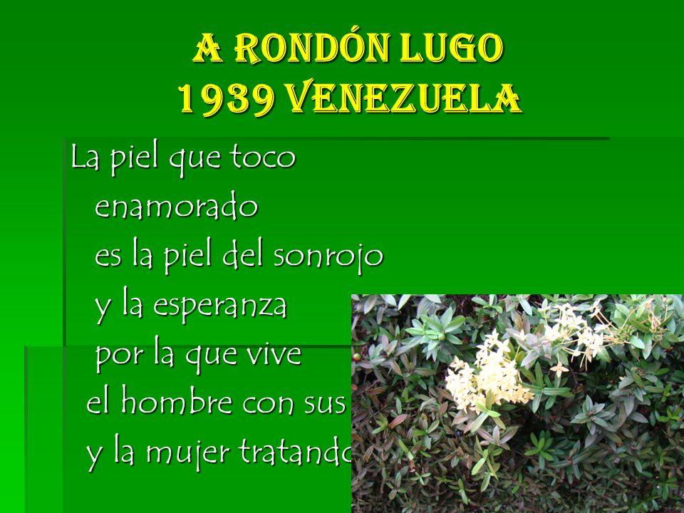 A Rondón Lugo 1939 Venezuela La piel que toco enamorado enamorado es la piel del sonrojo es la piel del sonrojo y la esperanza y la esperanza por la que vive por la que vive el hombre con sus sueños el hombre con sus sueños y la mujer tratando de domarlos y la mujer tratando de domarlos