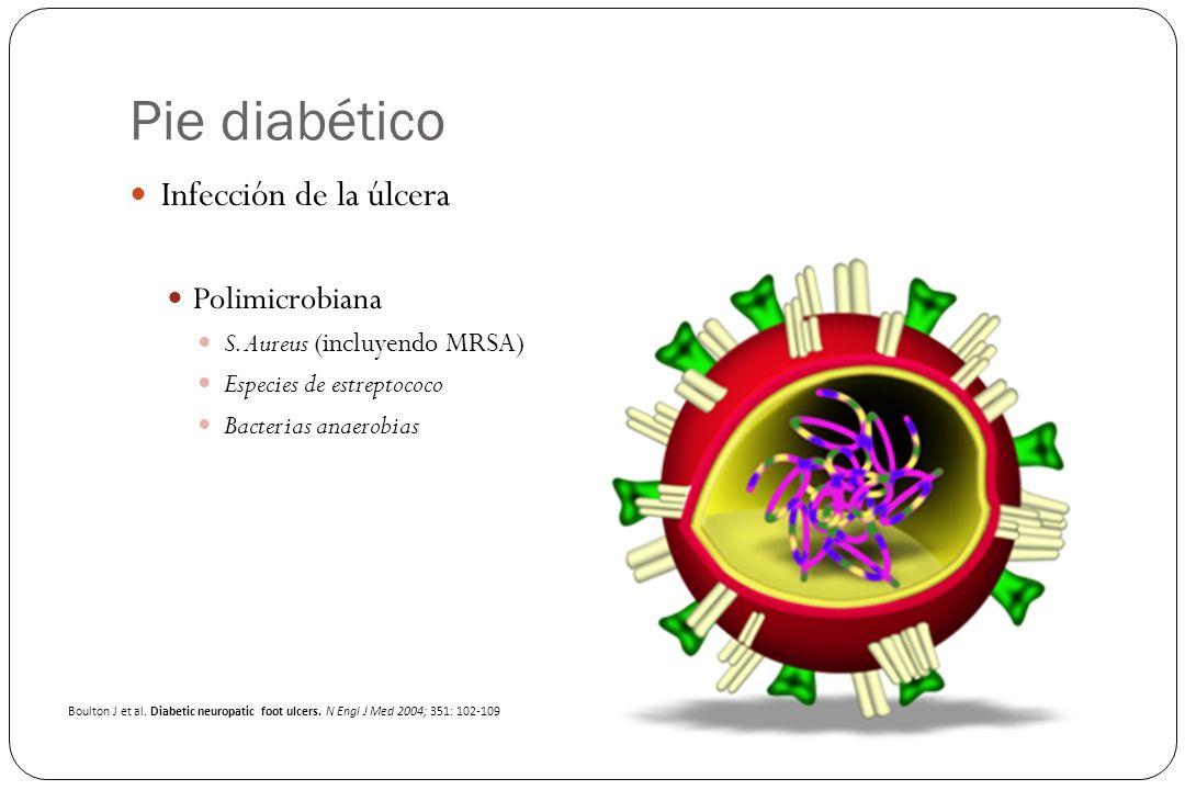 Pie diabético Infección de la úlcera Polimicrobiana S. Aureus (incluyendo MRSA) Especies de estreptococo Bacterias anaerobias Boulton J et al. Diabeti