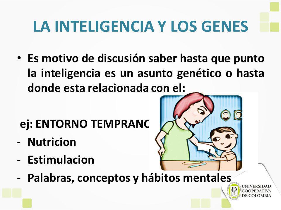 LA INTELIGENCIA Y LOS GENES Es motivo de discusión saber hasta que punto la inteligencia es un asunto genético o hasta donde esta relacionada con el: ej: ENTORNO TEMPRANO -Nutricion -Estimulacion -Palabras, conceptos y hábitos mentales