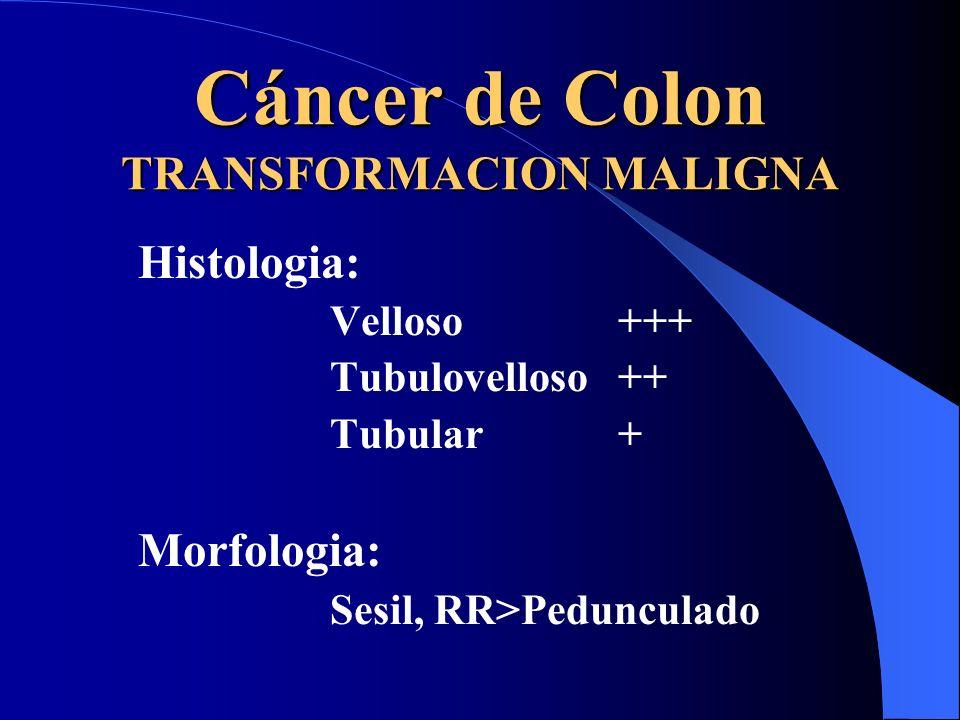 Cáncer de Colon TRANSFORMACION MALIGNA Histologia: Velloso +++ Tubulovelloso++ Tubular+ Morfologia: Sesil, RR>Pedunculado