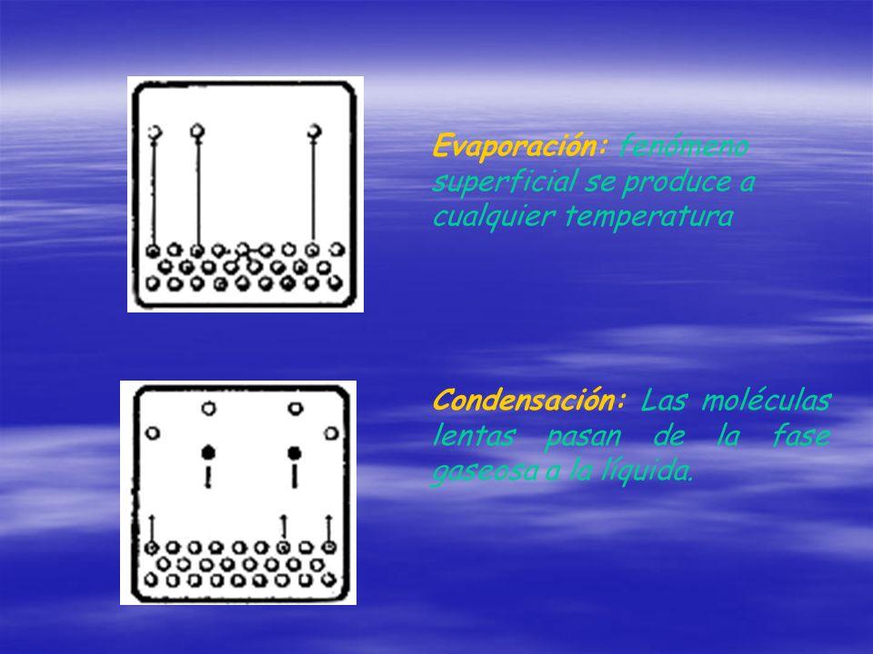 Evaporación: fenómeno superficial se produce a cualquier temperatura Condensación: Las moléculas lentas pasan de la fase gaseosa a la líquida.