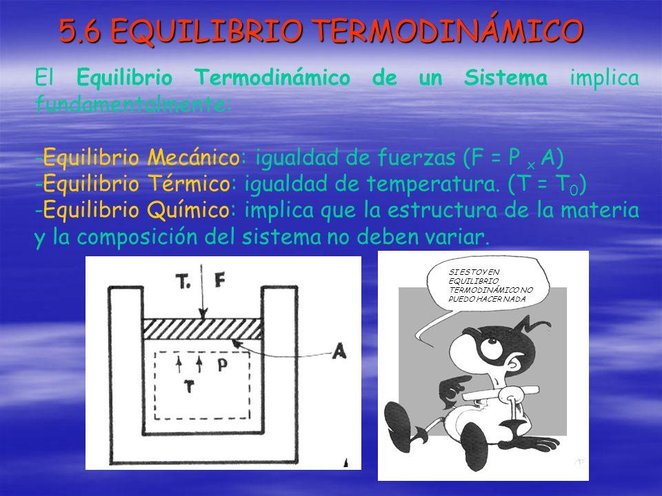 5.6 EQUILIBRIO TERMODINÁMICO El Equilibrio Termodinámico de un Sistema implica fundamentalmente: -Equilibrio Mecánico: igualdad de fuerzas (F = P x A)